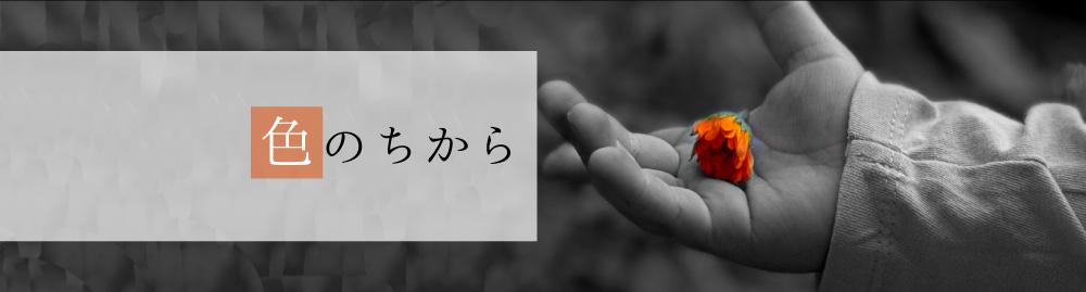 日本福祉パステルアート協会